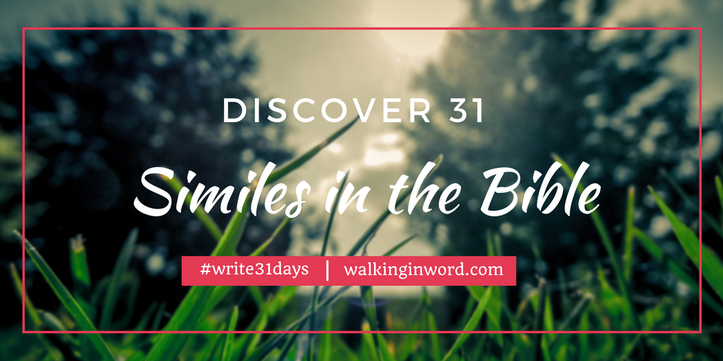 Discover 31 Similes in the Bible