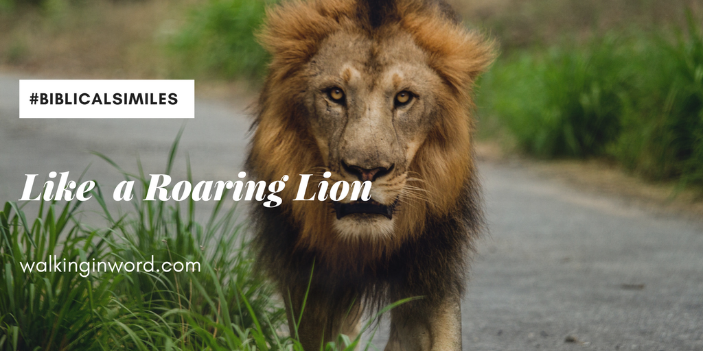 Day 28 ~ Like  a Roaring Lion