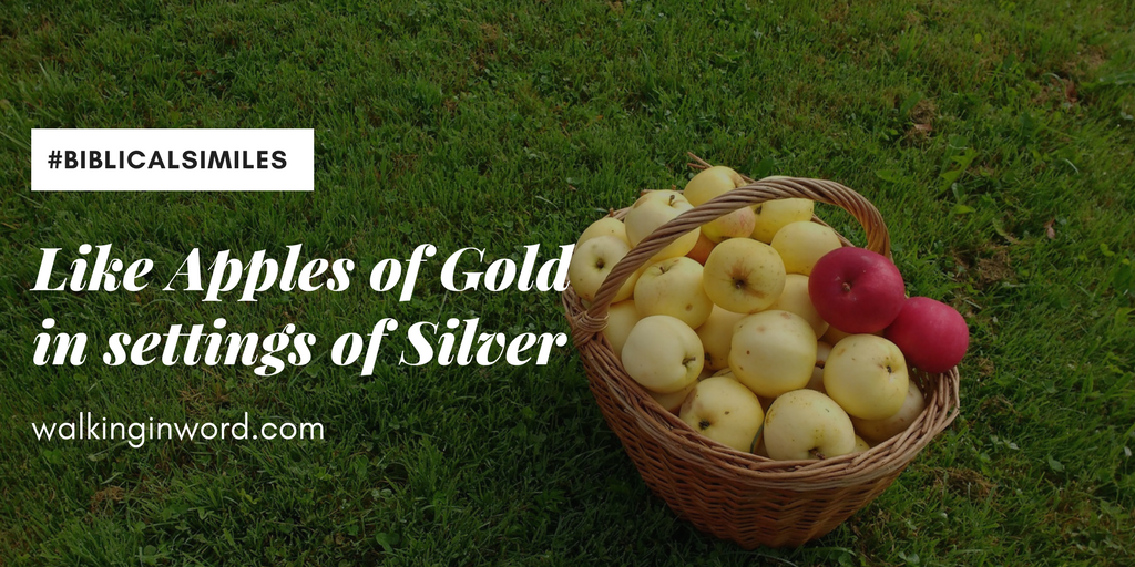 Day 7 ~ Like Apples of Gold in settings of Silver